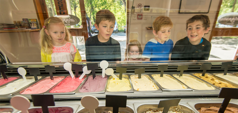 Kids Looking at Ice Cream